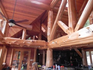 Rough beams in the Reichman Project