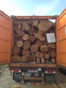 logs-in-truck