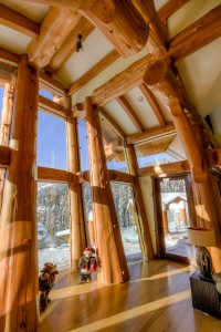 Western Red cedars in timber frame log home
