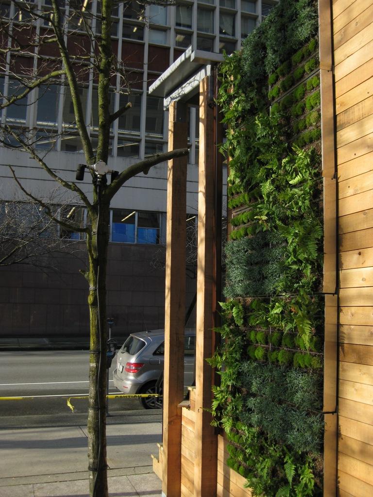 vertical wall garden