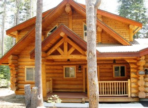 traditional log cabin in the woods
