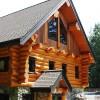 Log cabin basement entrance