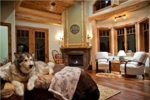 luxury master bedroom with husky on bed